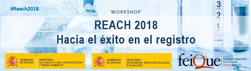 Registro REACH 2018. Hacia el éxito en el registro