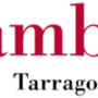 Planificación Misiones Tarragona 2020